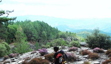 randonneur devant un paysage de cevennes